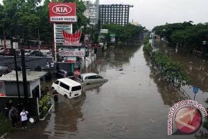 BNPB berharap Presiden Jokowi turun tangan atasi bencana