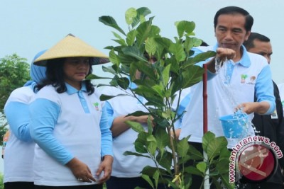 EARTH WIRE -- Social forestry program has many benefits