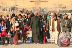 68.500 orang mengungsi karena operasi militer di Mosul