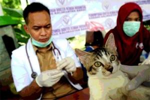 ANTARA Doeloe : Lima dokter hewan sebagai hasil pertama kalinja