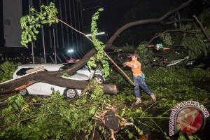 Hujan deras, ini 10 titik pohon tumbang dan banjir di Jakarta