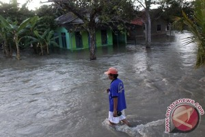 Lima desa di Siak tergenang banjir
