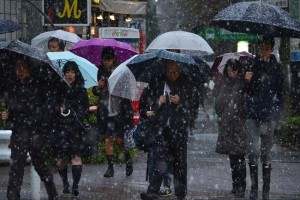 Tokyo hits by first November snow in 54 years