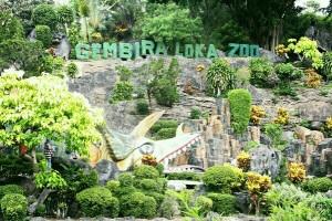 Peraya tahun baru juga padati Kebun Binatang Gembira Loka
