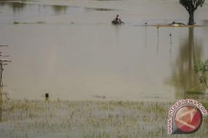 Ratusan rumah di Bojonegoro terendam banjir