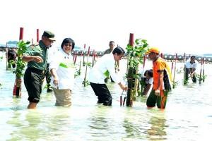Menteri LHK : banyak ancaman pesisir harus diatasi