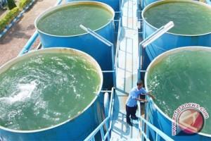 Saran Kementerian Kesehatan: jangan minum air sumur