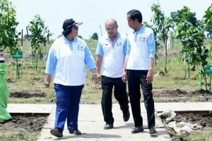 Pemerintah siapkan 12,7 juta hektare hutan masyarakat