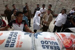 Mensos minta korban gempa Aceh tabah