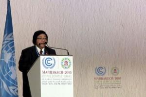 KLHK susun kebijakan jauhkan masyarakat dari bencana ekologis