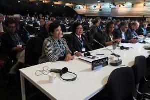 Deklarasi Marrakesh sinyal wujudkan penanganan perubahan iklim