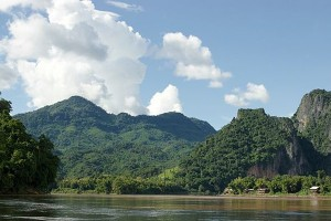 Peneliti temukan 163 spesies baru di kawasan Mekong