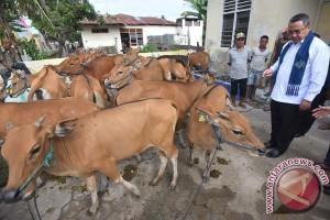 Pemanfaatan Dana Desa Untuk Masyarakat