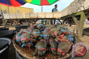 Bandara Sam Ratulangi berhasil gagalkan pengiriman kepiting kenari