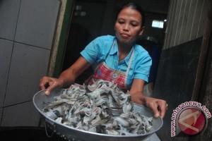 UGM: bisnis tepung tulang ikan Indonesia capai triliunan rupiah per tahun
