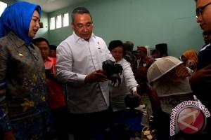 Peresmian Desa Cerdas Pertama Di Indonesia