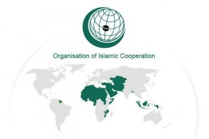 World Islamic body says Trump visa ban emboldens extremists