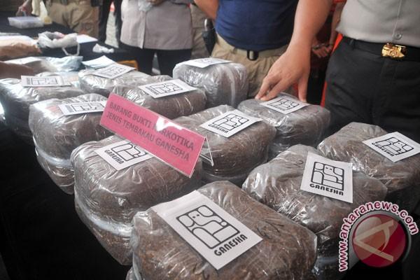 Bareskrim tangkap sindikat pembuat tembakau narkoba