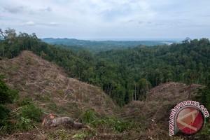 Ahli: deforestasi bantu penularan penyakit hewan ke manusia