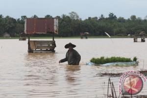 Menkes ingatkan ancaman penyakit saat banjir