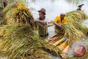 Petani Temanggung ikuti sekolah lapang iklim