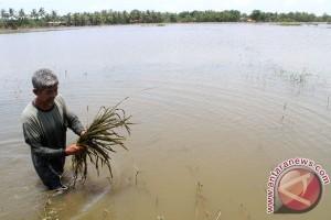 Banjir bandang landa Pulau Belitung, ratusan rumah terendam