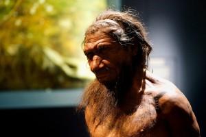 DNA plak gigi ungkap menu makanan Neanderthal
