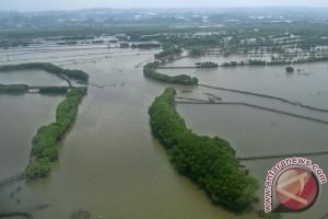 Pemkot Semarang komitmen lestarikan 13 hutan kota