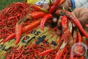 Harga komoditas sayuran di Sukabumi berfluktuasi