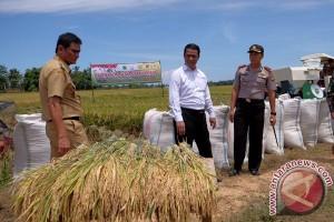 Mentan minta Sulbar dukung penguatan pangan nasional