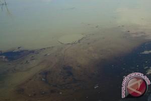 Teknologi bioremediasi mampu tanggulangi limbah minyak di laut