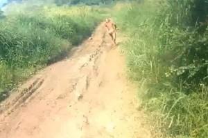 Jangan interfensi suku pedalaman, kata antropolog