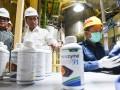 Produksi Enzim Petrosida