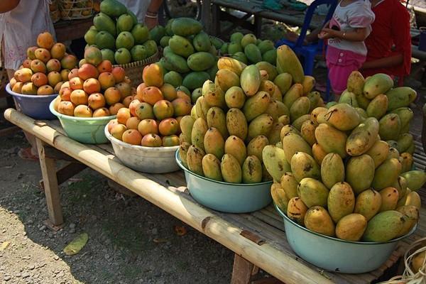 Indonesia-Thailand kerja sama riset pascapanen buah