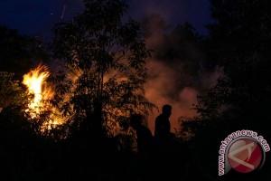 Sembilan titik api ditemukan di Sintang Kalimantan Barat