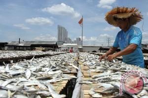 Pengolah ikan asin di Sumber keluhkan naiknya harga garam