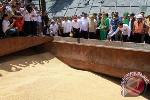 Pengiriman Jagung Gorontalo