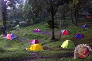 Menko Perekonomian: optimalkan taman nasional untuk pariwisata