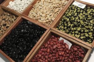 Bank biji solusi alternatif selamatkan flora dari kepunahan