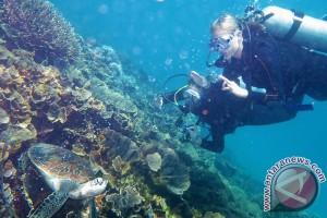 Warganya hilang di Pulau Komodo, Singapura kirim pemantau