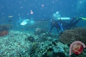 Kepolisian Manggarai cari wisatawan Singapura yang hilang di Pulau Komodo