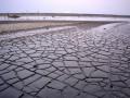 "Seni instalasi peringatan 10 tahun lumpur lapindo yang berjudul ""Gombal"" terendam di area kolam penampungan lumpur di titik 71 Porong, Sidoarjo, Jawa Timur, Selasa (16/5/2017). Menjelang peringatan 11 tahun semburan lumpur Lapindo pada 29 Mei mendatang, masih ada 244 berkas yang belum diselesaikan pembayarannya senilai Rp54,33 miliar dan 19 berkas susulan milik warga yang diusulkan dengan nilainya Rp9,8 miliar serta ganti rugi bagi 30 perusahaan dengan nilai tuntutan Rp701 miliar. (ANTARA/Umarul Faruq)"