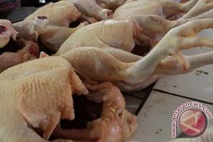 Masyarakat Pangkalpinang keluhkan harga daging ayam mahal