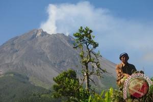 Asap Sulfatara Gunung Merapi