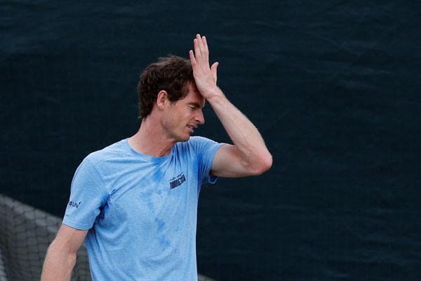 Murray capai perempat final Wimbledonsepuluh tahun berurutan