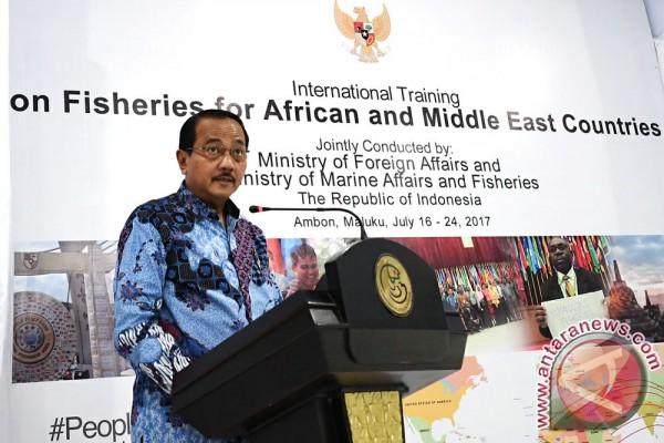 Indonesia gelar ratusan pelatihan untuk negara berkembang