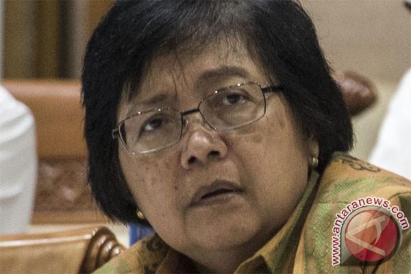 Masalah penutupan HPH Yamdena jadi perhatian menteri lingkungan