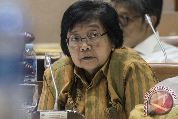RAPP must abide by regulations: environment minister