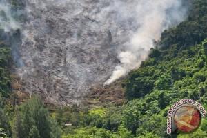 Pembakaran Hutan Aceh