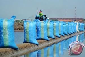 BPPT gandeng PT Garam kembangkan produk dalam negeri